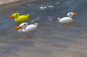 healthy-ducks