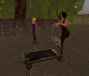 Calli's Carriage