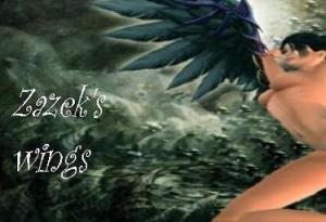 zazeks wings