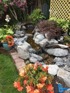 Claire garden 1