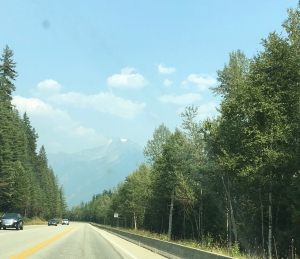 looking at the Rockies north of Revelstoke
