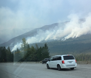 wildfires Rogers Pass