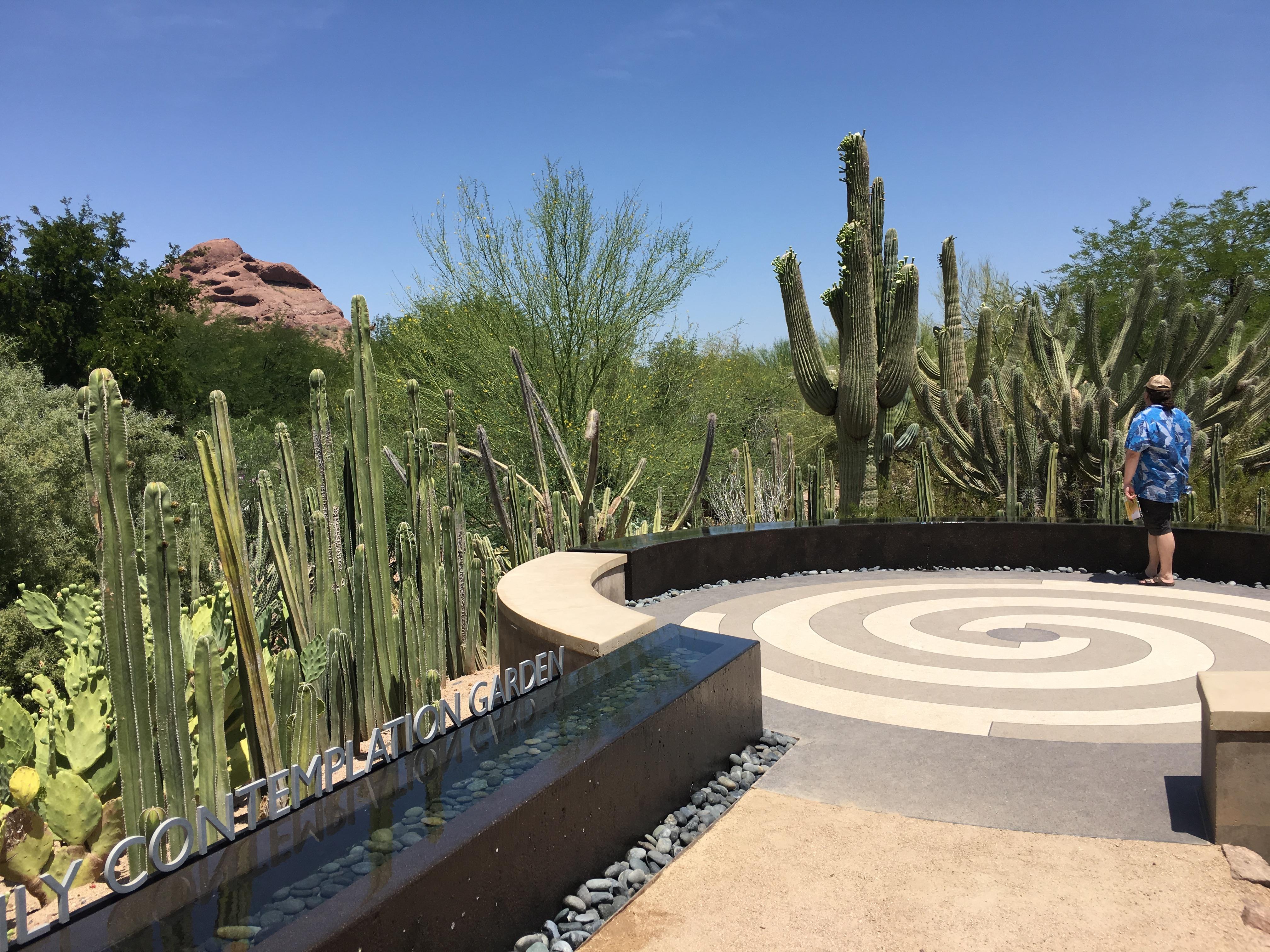 contemplation garden