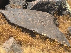 deer valley petroglpyph