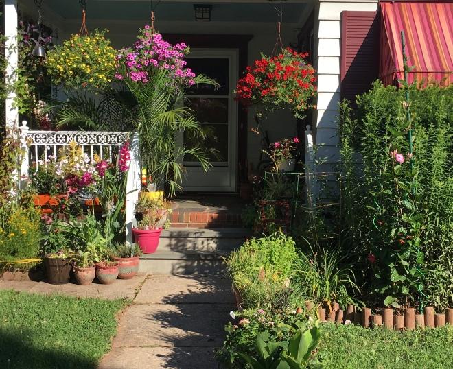 morning glory porch