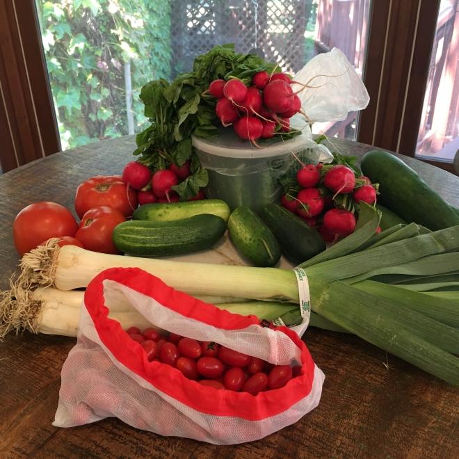 produce still life