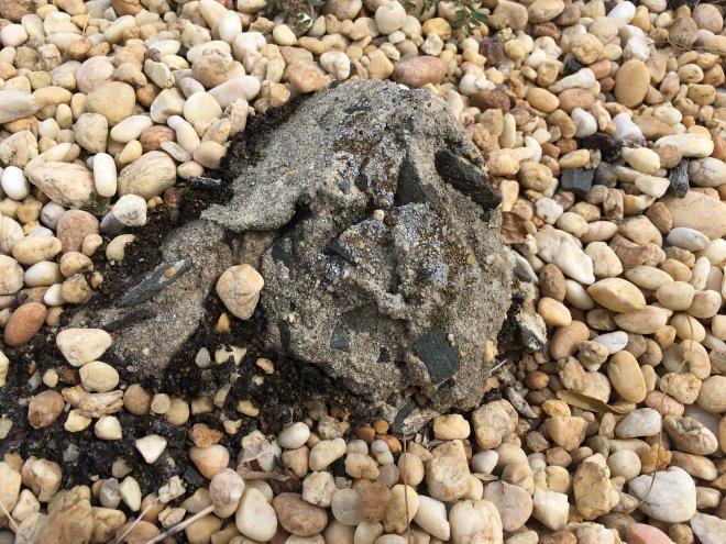 rock amid pebbles