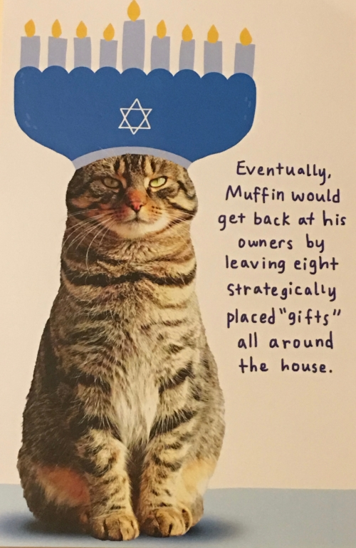 Sarah's chanukah card
