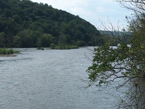 Delaware River, looking north
