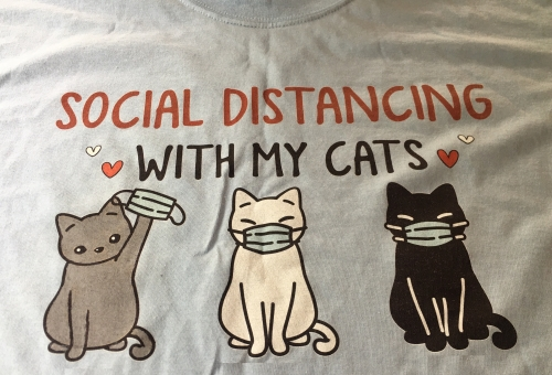 Social Distancing With My Cats