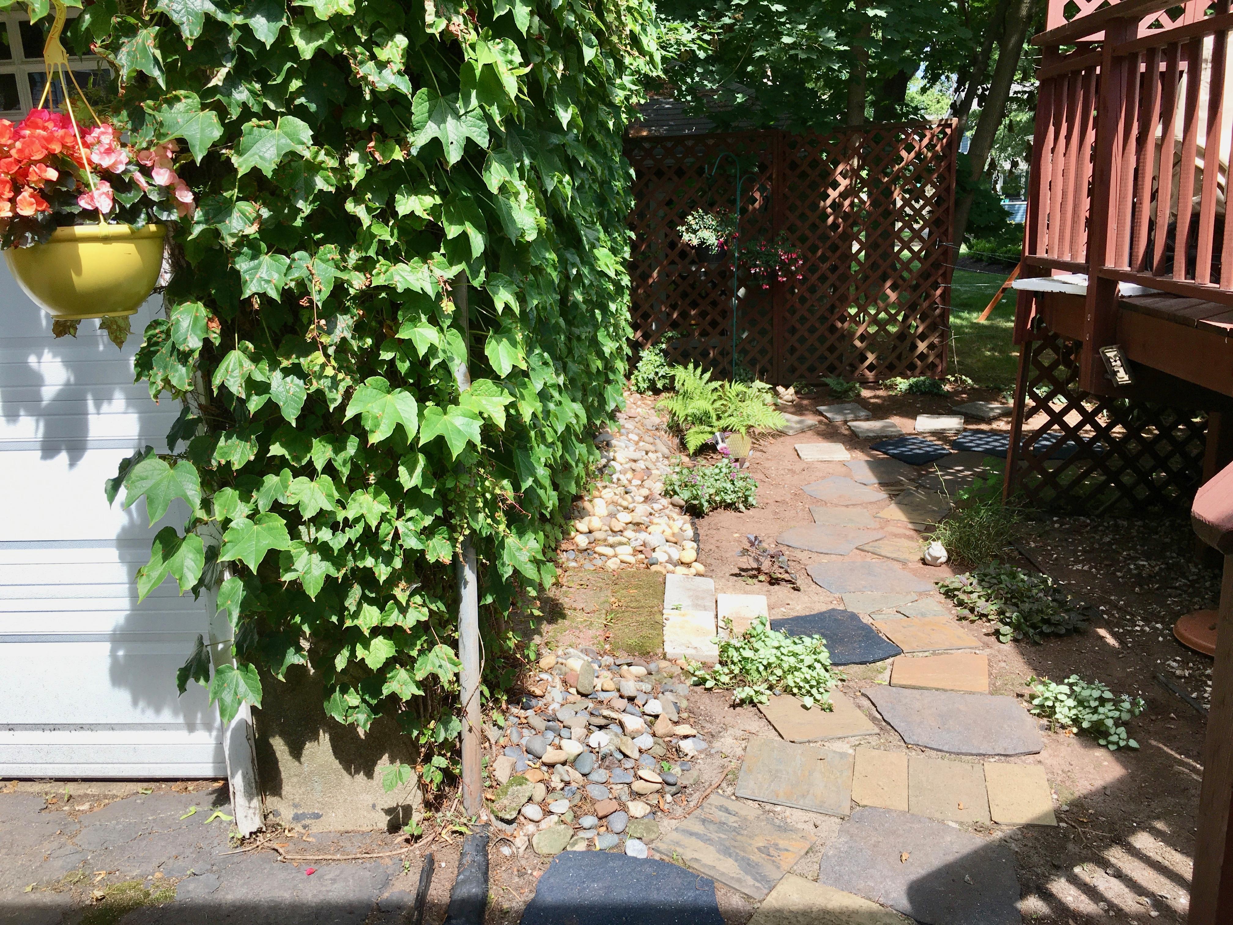 weeded backyard